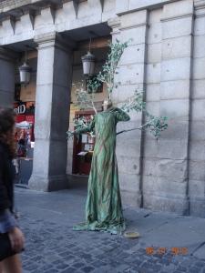 The Tree Man!