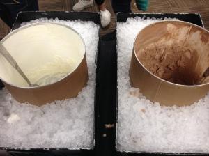 vanilla vs. chocolate ice cream