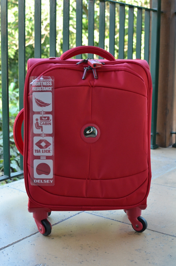 Delsey U-Lite 53cm wheel cabin trolley case