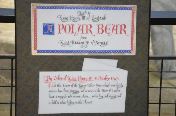 Polar Bear description