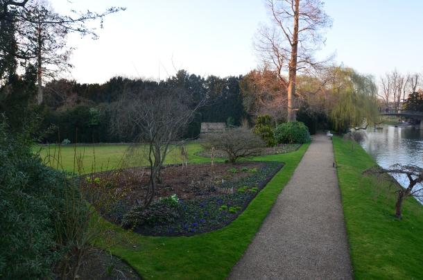 sneak peak into the Fellows Garden