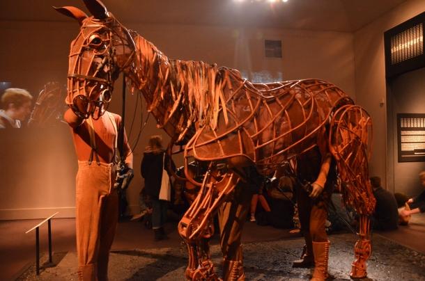 """Joey, """"War Horse"""""""
